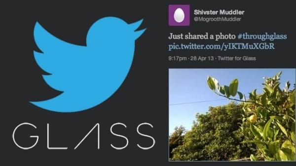 تويتر يعتزم طرح تطبيق خاص لنظارات جوجل الذكية