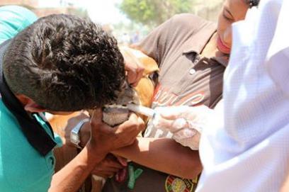 قاقلة بيطرية للحرية والعدالة بأبو حماد تحقق الاستفادة لـ 1500 رأس ماشية