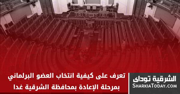 صورة تعرف على كيفية انتخاب العضو البرلماني بمرحلة الإعادة بمحافظة الشرقية غداََ