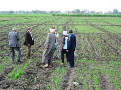 صورة بالصور.. وكيل وزارة الزراعة بالشرقية يتابع توزيع الأسمدة على المزارعين