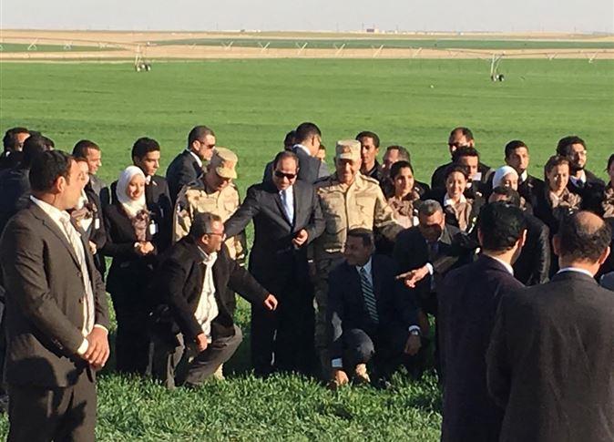 صورة 5 شروط لحصول الشباب على أراضي الـ1.5 مليون فدان
