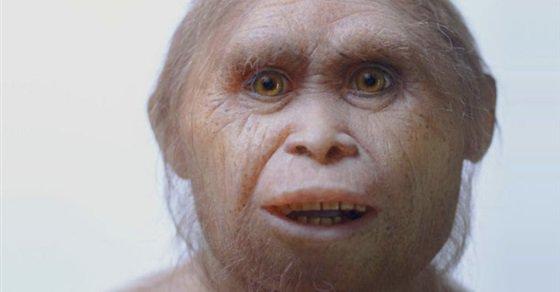 صورة اكتشاف فصيلة من الإنسان القزم في جزيرة إندونيسية