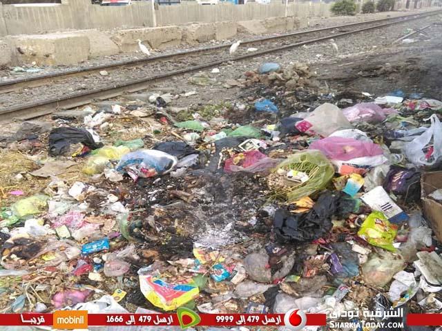 صورة تكدس القمامة خلف سور القطار بالعصلوجى