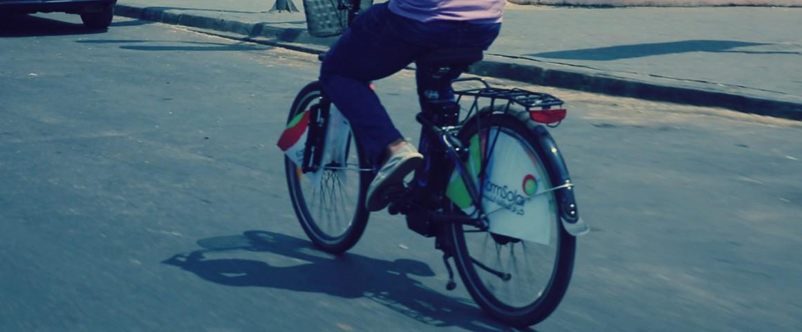 صورة مبادرة جديدة في مصر للحفاظ على البيئة: «عجلة لكل موظف»
