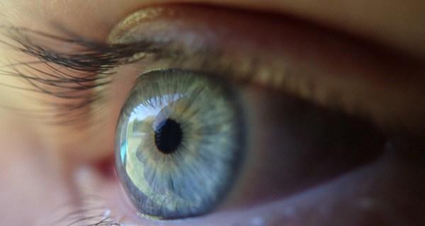 صورة الزعفران لتحسين نظرك بطريقة طبيعية