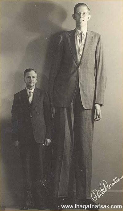 تعرف على أطول 10 رجال في العالم
