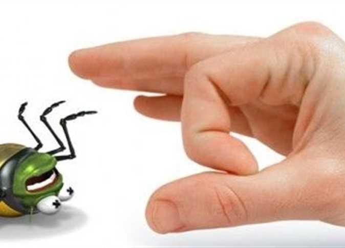 صورة وصفة منزلية للتخلص من البعوض والصراصير.. النتيجة خلال ساعة