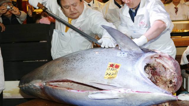 صورة بيع سمكة تونة بـ 74 مليون ين في اليابان