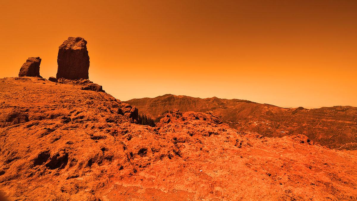 صورة الإمارات تُعلن: سنبني مدينة متكاملة في المريخ.. وهذا تاريخ افتتاحها