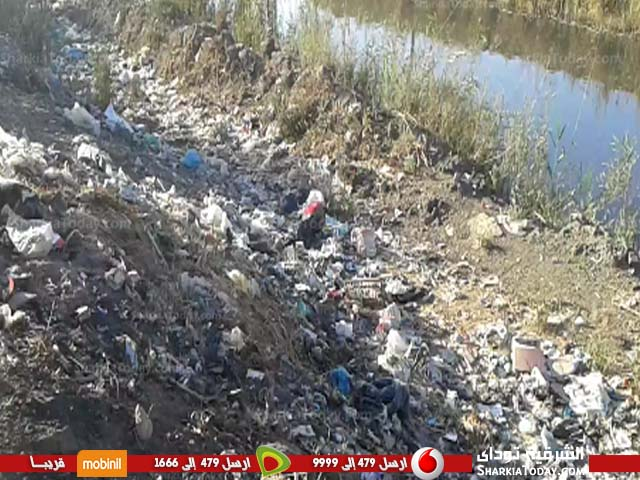 صورة بالصور.. أهالي قرية الصنافين بمنيا القمح يستغيثون لإزالة مقلب القمامة حفاظاً على صحتهم
