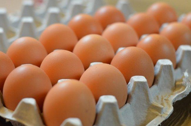 صورة الإصلاح الزراعي : توفير 400 ألف بيضة بسعر 32 جنيهًا للكرتونة