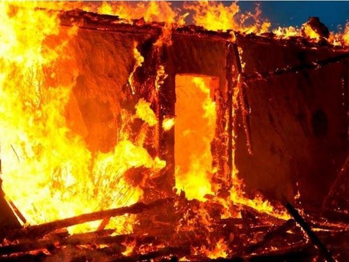 صورة نفوق 2000 كتكوت في حريق مزرعة دواجن بأبوكبير