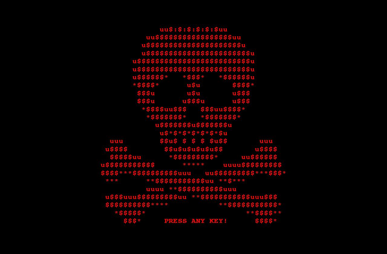 صورة فيروس إلكتروني يضرب مصر ..  وخُبراء : «في حالة الاختراق ستتوقف المنشآت الحيوية»
