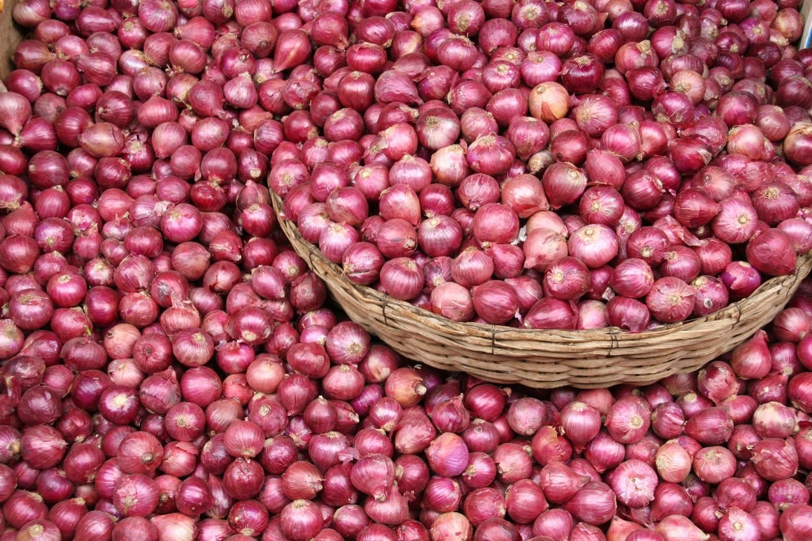 صورة أول إجراء من الزراعة بشأن حظر السعودية استيراد البصل المصري