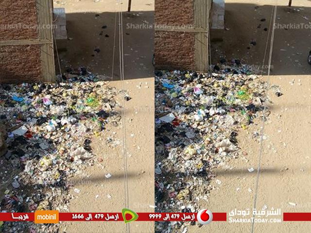 صورة أكوام القمامة شبح يطارد أهالي منطقة عبداللطيف حسانين بـ «الزقازيق»