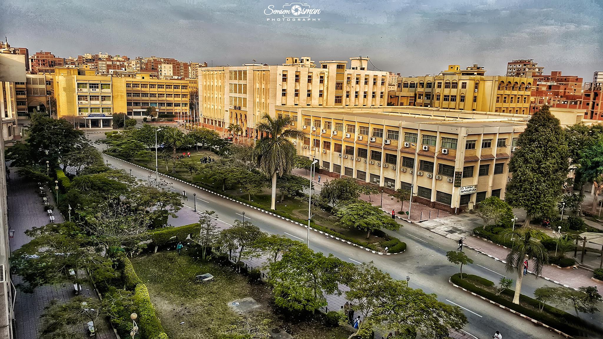 صورة جامعة الزقازيق تعلن فتح باب التقدم لجوائز النشر العلمي الدولي لعام 2018