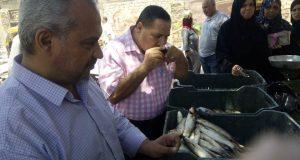 إعدام 476 كيلو مواد غذائية في حملة مكبرة بالشرقية 7