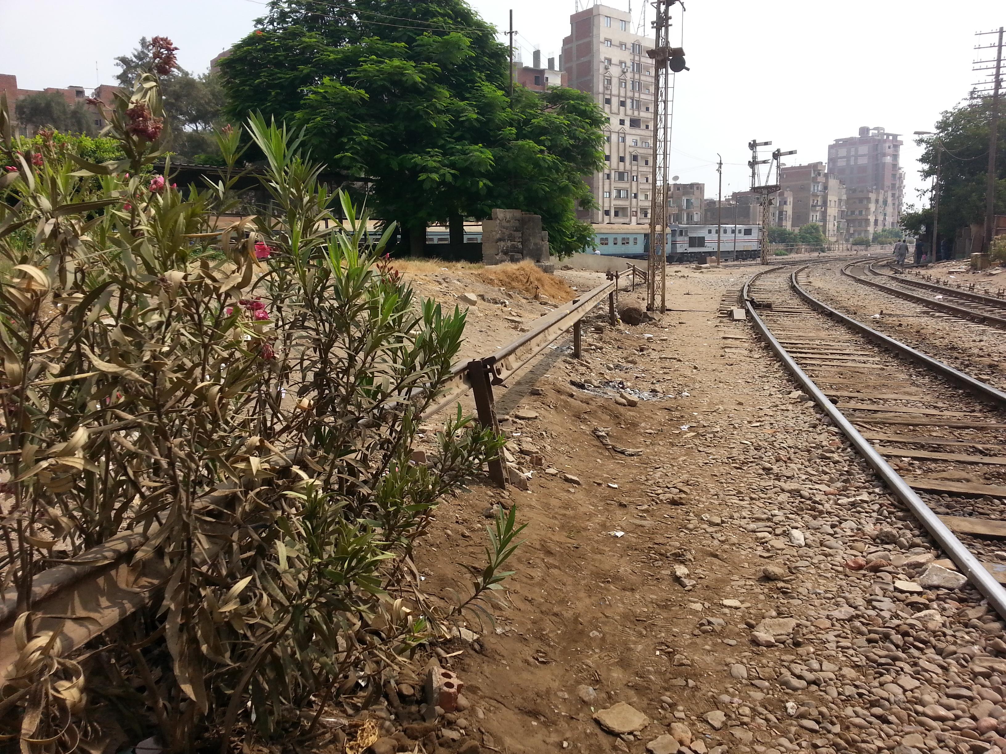 صورة مواعيد قطارات الإسكندرية القاهرة ..تعرف على أماكن الوقوف لكل قطار