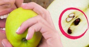 ابتلاع بذور التفاح تؤدي للوفاة