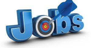 القوى العاملة تعلن توافر 4700 وظيفة شاغرة برواتب تصل لـ5 آلاف جنيه