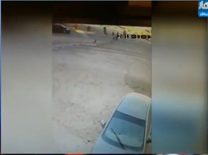 صورة هرب من الكلاب فدهسته السيارة.. تفاصيل دهس طفل المعادي