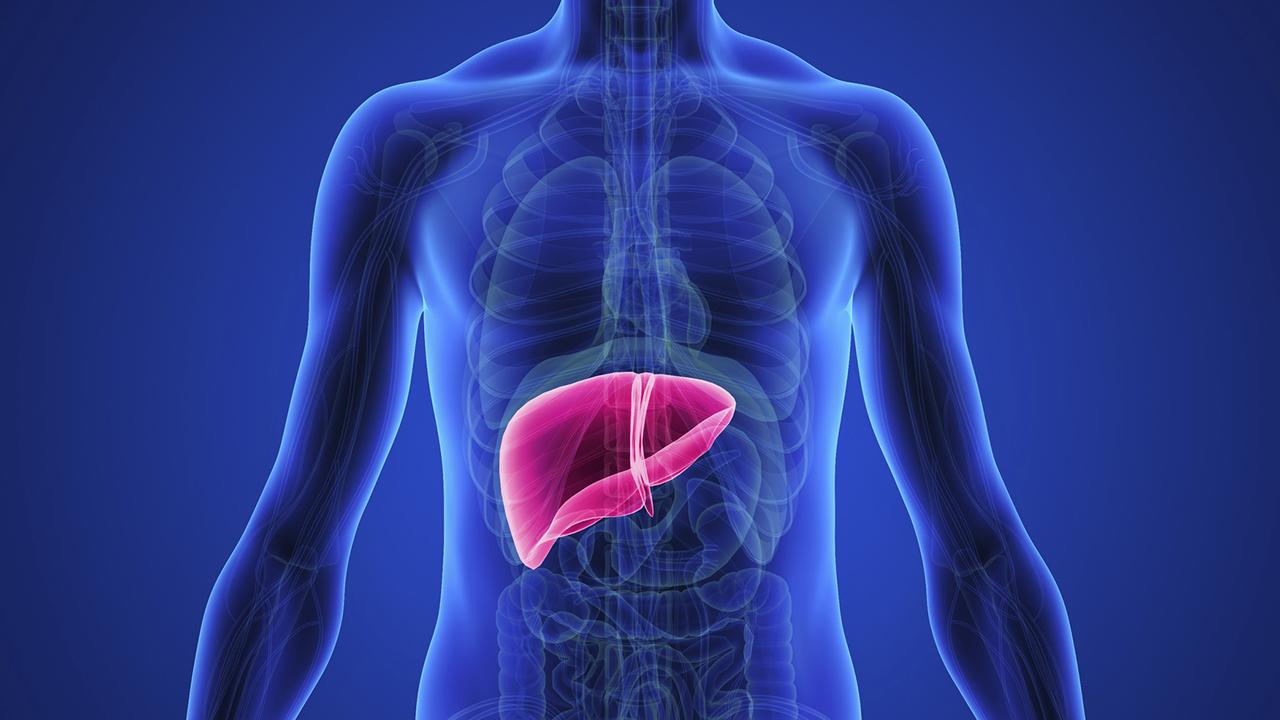 صورة عادات يجب التوقف عنها حتى لا تُدمر الكبد
