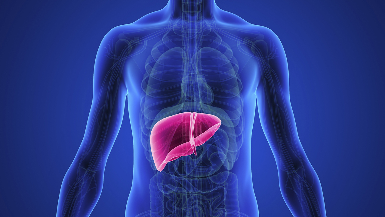 925540 78 131003 symptoms liver disease reasons prevention 2