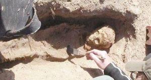 اكتشاف أثري جديد بالمنيا مقبرة بها 40 مومياء