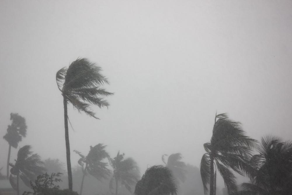 الأرصاد الجوية تكشف عن موعد انتهاء الطقس السيئ