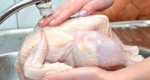 غسل الدجاج قبل الطهي يؤدى إلى كارثة صحية