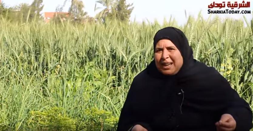 صورة الحاجة بدرية ضحكة البدر وقصة الشقى في الغيط بعد وفاة جوزها