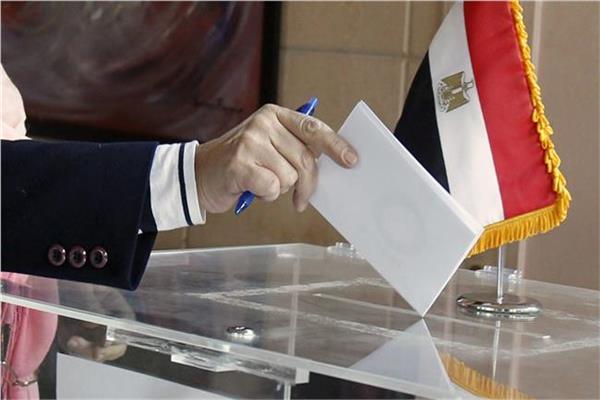 التصويت في الانتخابات