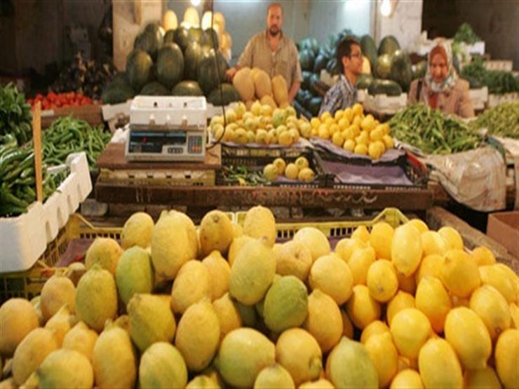 صورة وزارة التموين تطرح الليمون للمواطنين بسعر مخفض