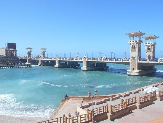 شواطئ الأسكندرية
