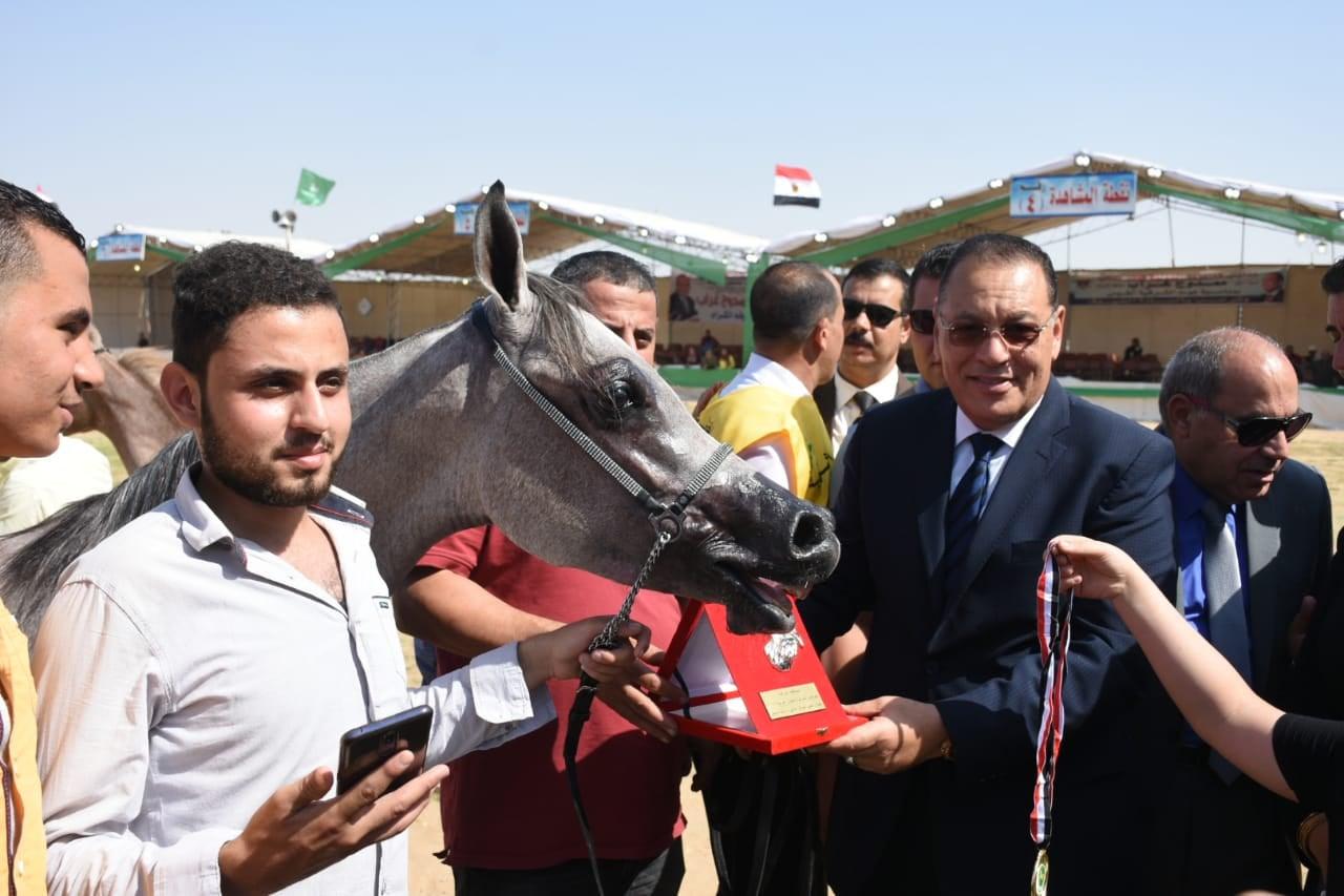 الشرقية يُسلم دروع التميز للفائزين فى مسابقة الخيول 3