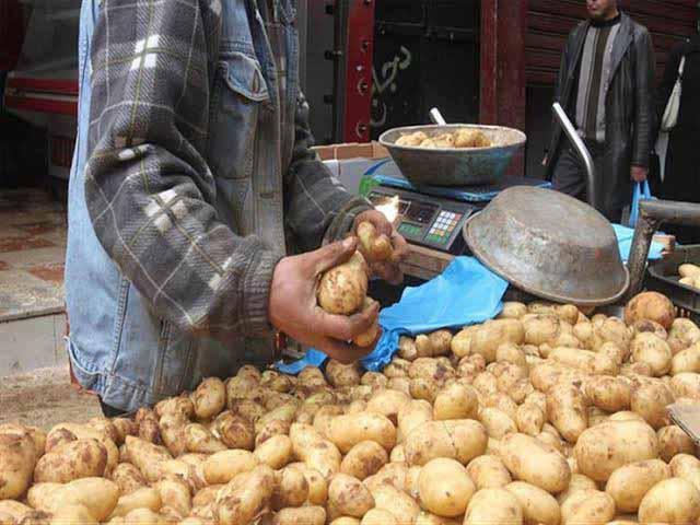 صورة تعرف على سعر كيلو البطاطس اليوم في مصر