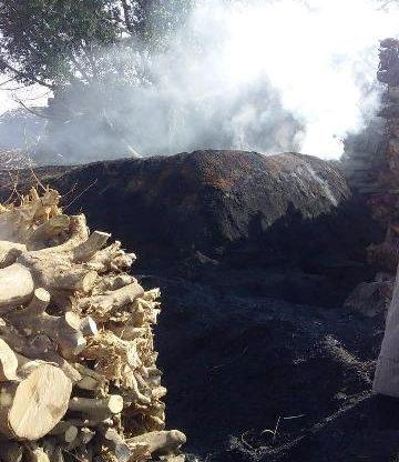 صورة إزالة مكامير الفحم في الزقازيق وبلبيس وههيا حفاظاً على البيئة