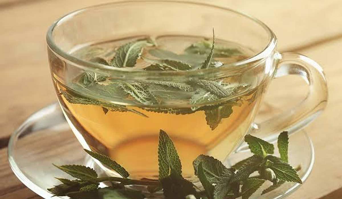 فوائد شاي المرامية