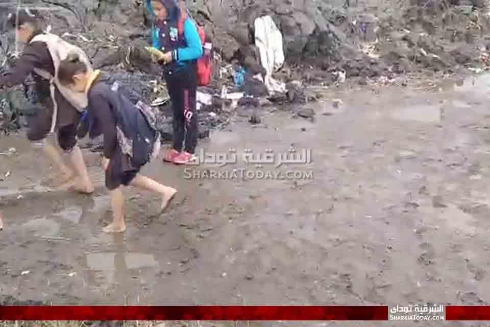 صورة كارثة تهدد طلاب مدرسة بالشرقية