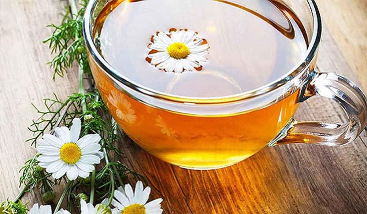 صورة فوائد الشاي الأخضر والبابونج