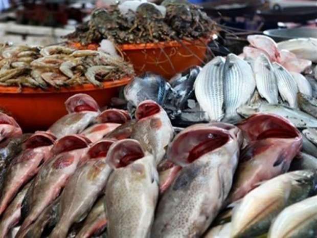 صورة استقرار في أسعار الأسماك اليوم بالأسواق المصرية