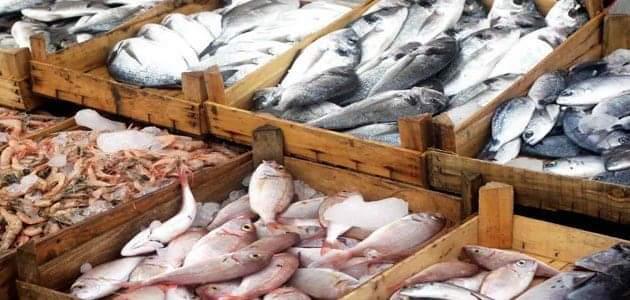 صورة استقرار أسعار السمك اليوم السبت 7 مارس 2020