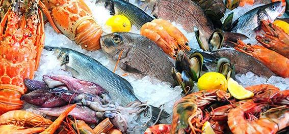صورة استقرار أسعار السمك اليوم الأحد 15 مارس 2020