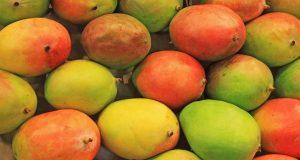 فوائد فاكهة المانجا