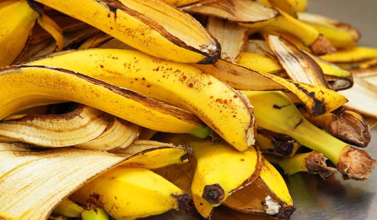ما هي فوائد قشر الموز