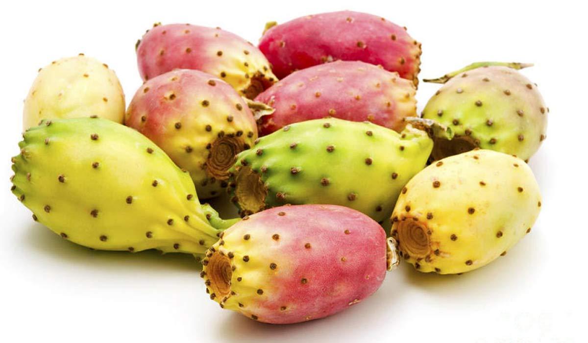 صورة فوائد أكل ثمار الصبر