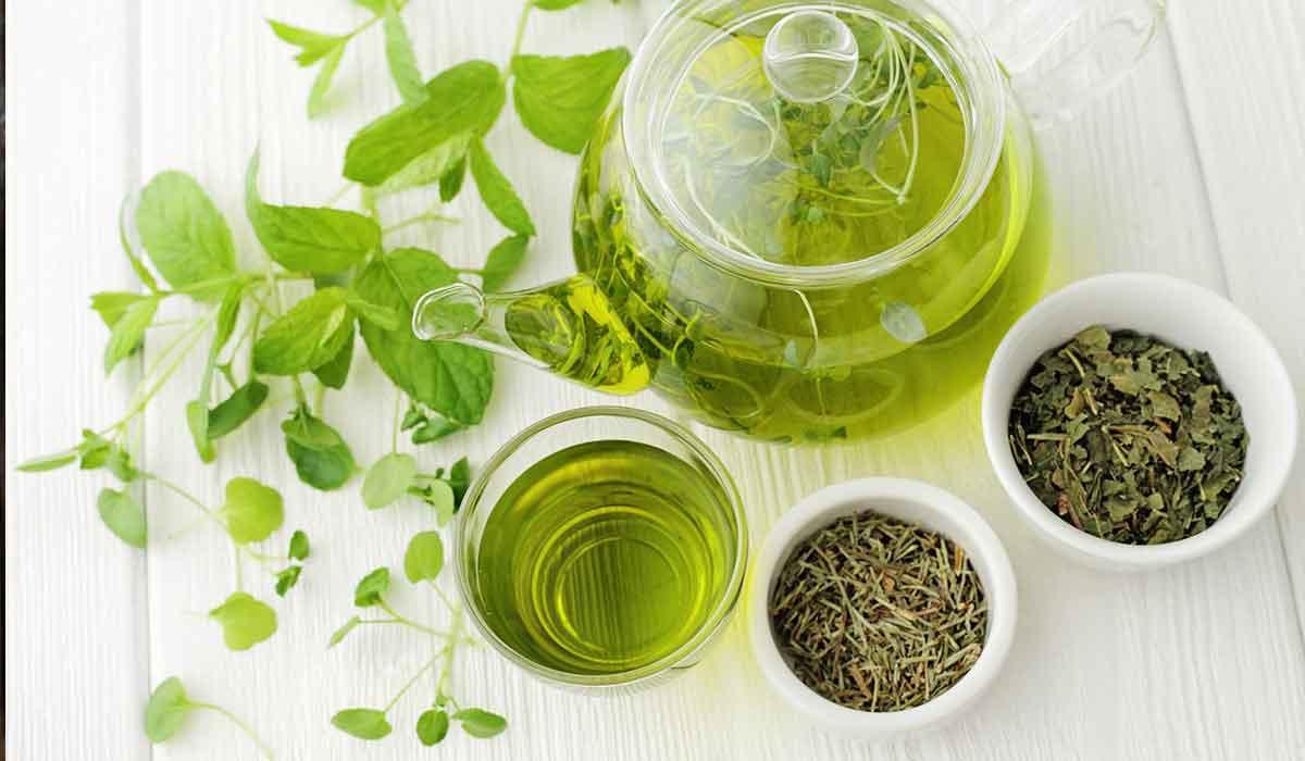 صورة فوائد الشاي الأخضر المجفف
