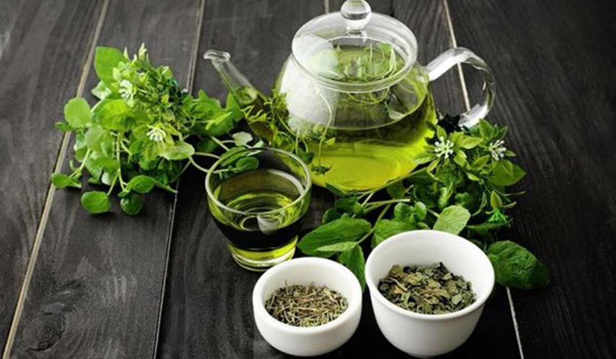 صورة فوائد الشاي الأخضر والكمون