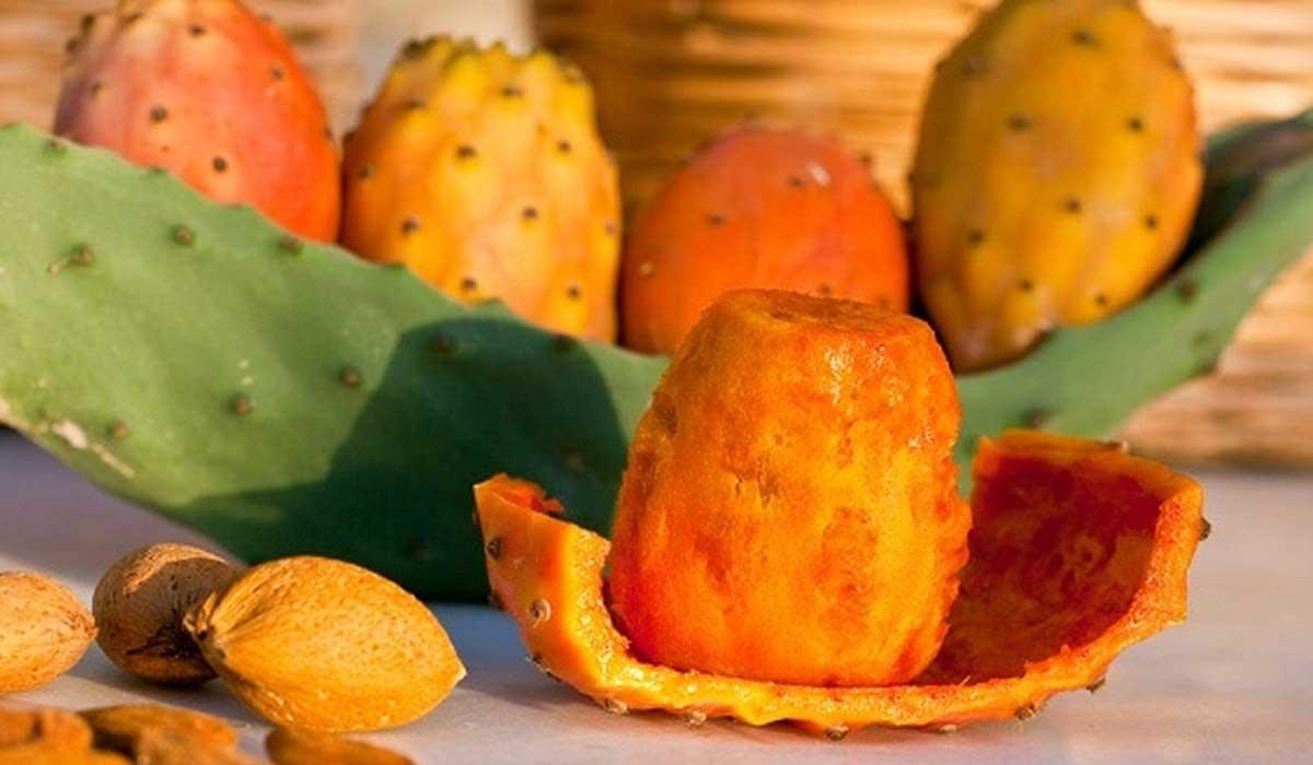 صورة فوائد ثمار التين الشوكي