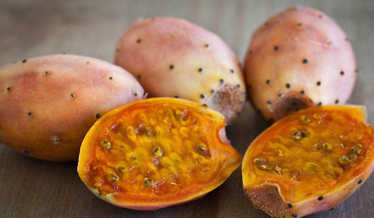 صورة فوائد فاكهة الصبار للجسم